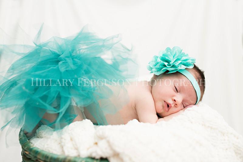 Hillary_Ferguson_Photography_Carlynn_Newborn193.jpg