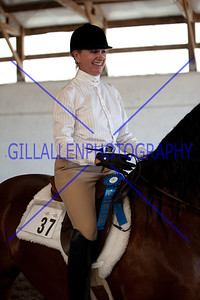English Pleasure/Novice Rider English  110724