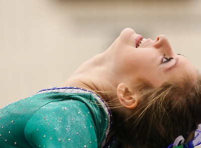 Gymnastics - Woodinville, Skyline, Newport & Eastlake