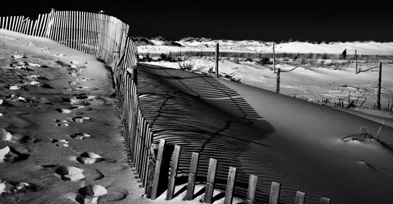 Sand Dunes, Shadows, Footprints and Fence, Cape Henlopen state Park, Delaware