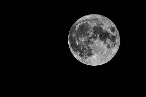Moon - Buck Moon - July 23 2021
