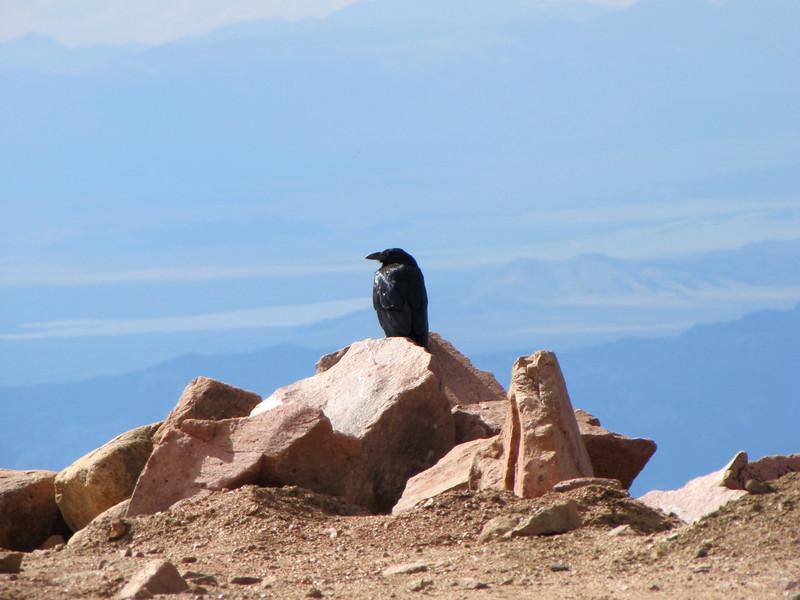 Pikes Peak 2011 (233).jpg