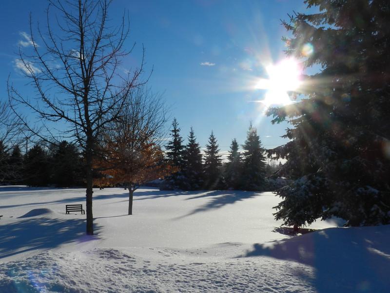 fantastic snow-7140.jpg
