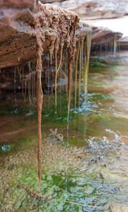 2014-04 Canyonlands NP, Needles District - Salt Creek, Day 2