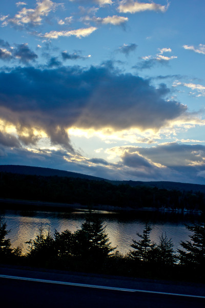 Project Newfoundland