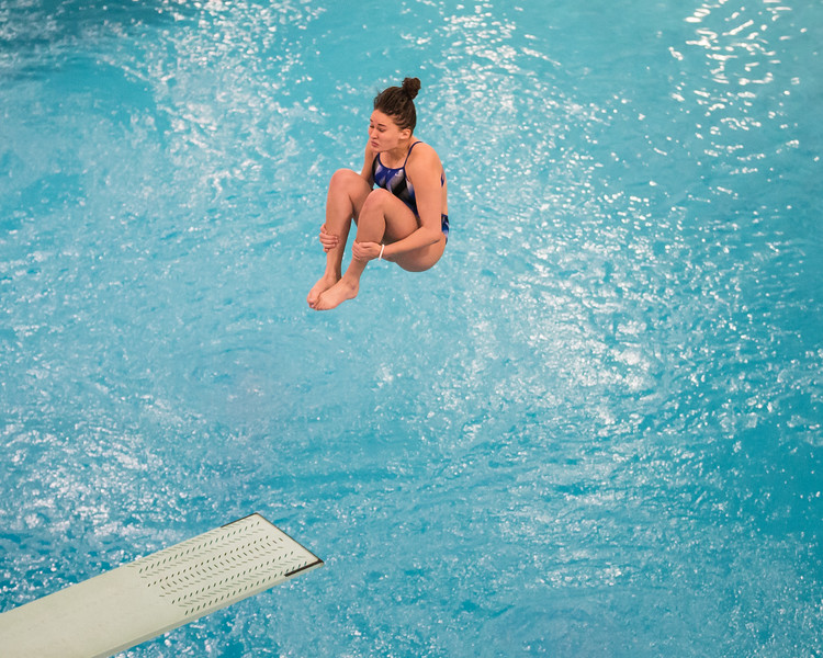 D1 Diving-20.jpg