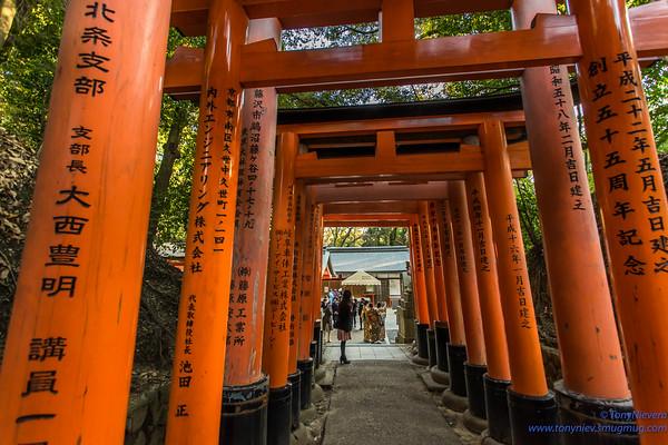 Japan, Kyoto- Inari
