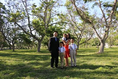 Ally & Joe's Wedding