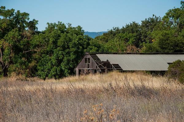 Coyote  Creek Parkway County Park