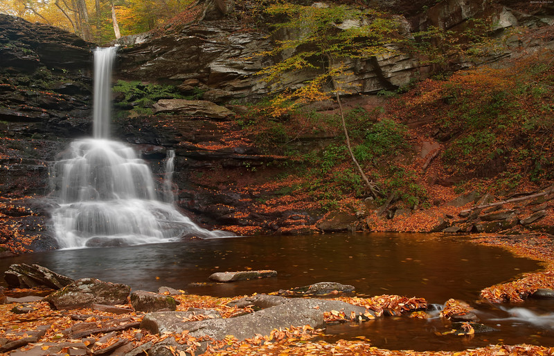 Sheldon Reynolds Falls in Ricketts Glen, PA