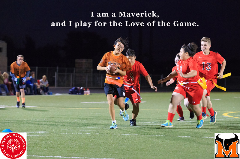 Play for the Love of the Game.jpg
