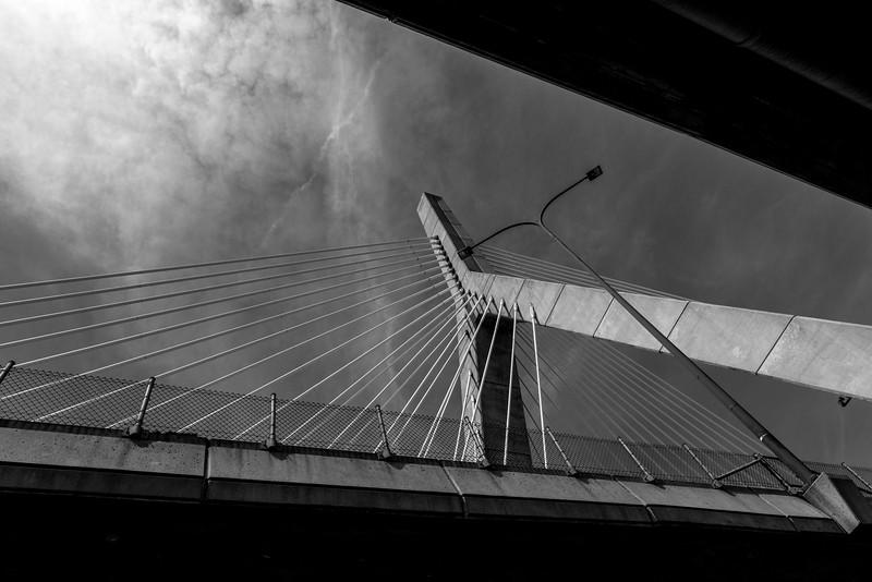 Boston_Daniel Dopler Photography -50.jpg