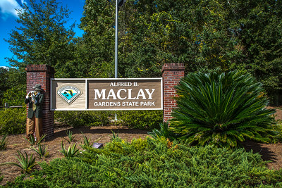 Alfred B Maclay State Park, Florida
