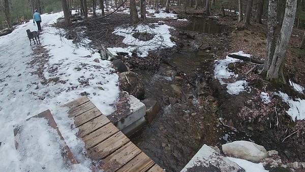 Stonehouse Pond 1-18-2021