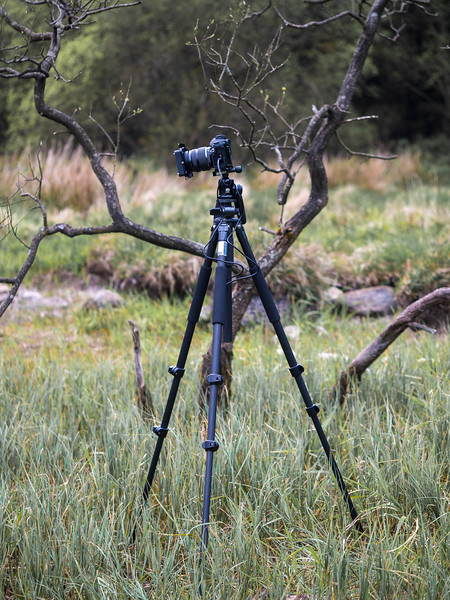 Tripods and Heads