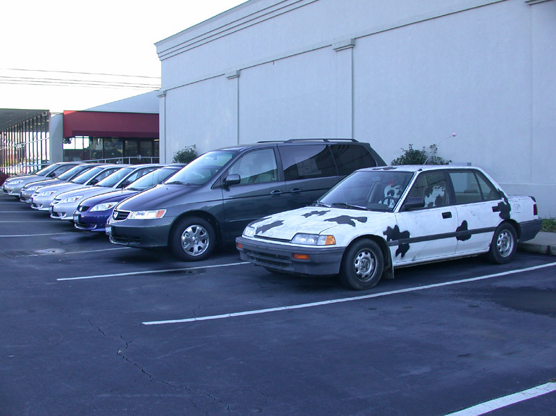 The latest in a long line of fine Hondas