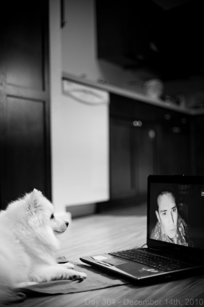 Today, I got inspired for some new projects beyond photography, so I ran some errands for those. Later, while I was cooking dinner, Koda and I got a Afghanistan lunchtime Skype call in the kitchen.