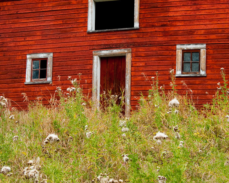 Old Alberta barn 3