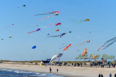 Kites - Fort Fisher