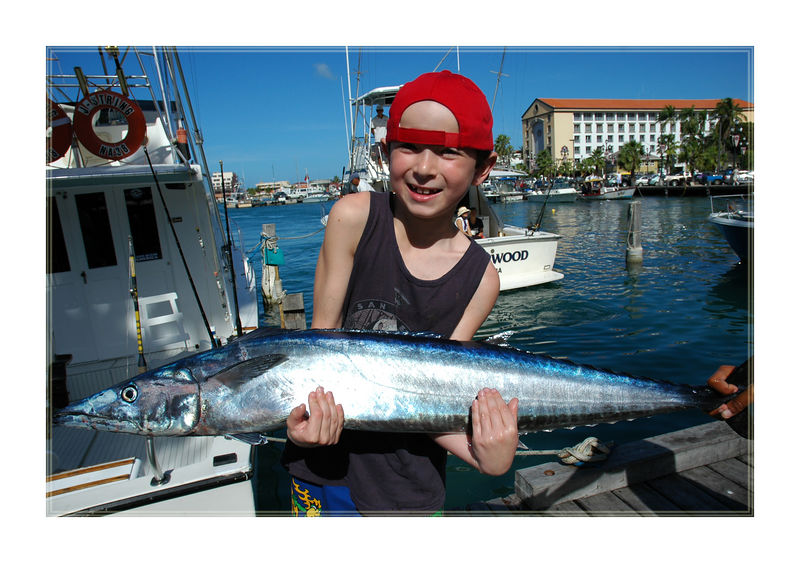 Catch of the day - Sword Fish