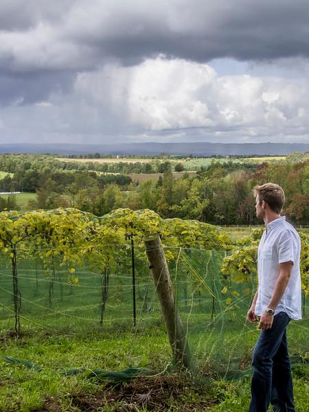 roost wine company michael looking away.jpg