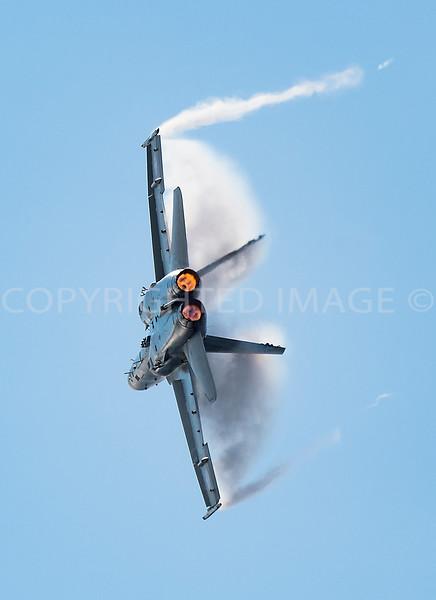 Swiss Hornet  F/A 18