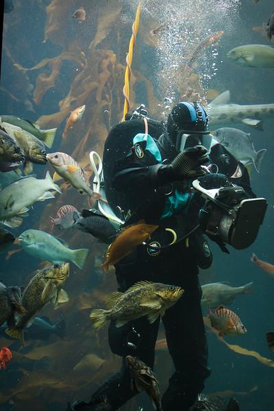 Monterey Bay Aquarium-2586.jpg