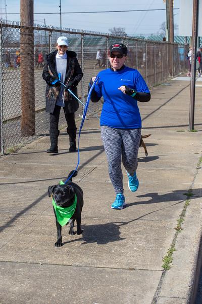 Richmond Spca Dog Jog 2018-751.jpg
