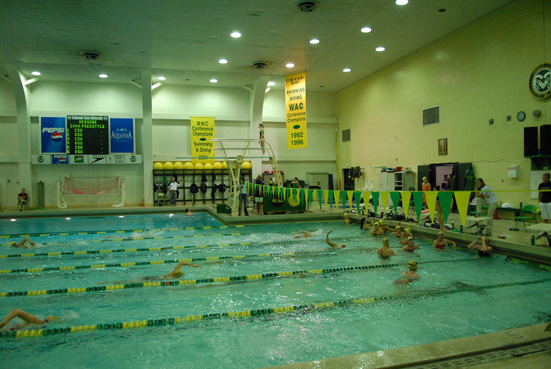 2007 CSU Swimming and Diving