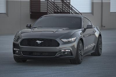 Mustangs (03.08.15)