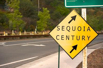 (43) 2014 Sequoia Century DSC_0427