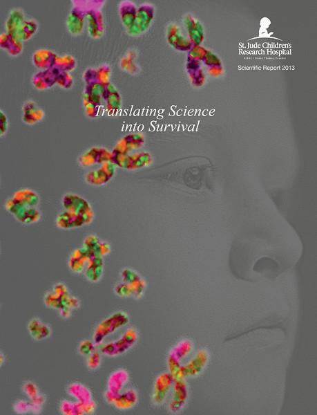 2013 St. Jude Scientific Report