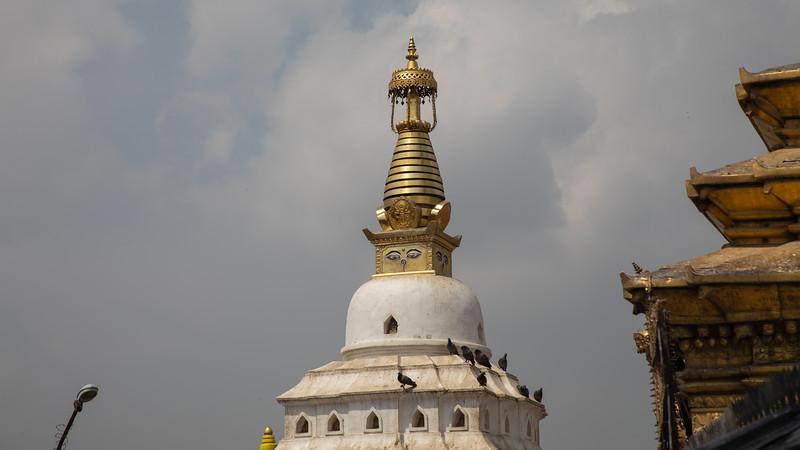 190407-103909-Nepal India-5815.jpg