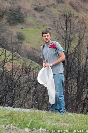 Save Mount Diablo BioBlitz 2014