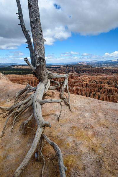 20160326 Bryce Canyon 131.jpg