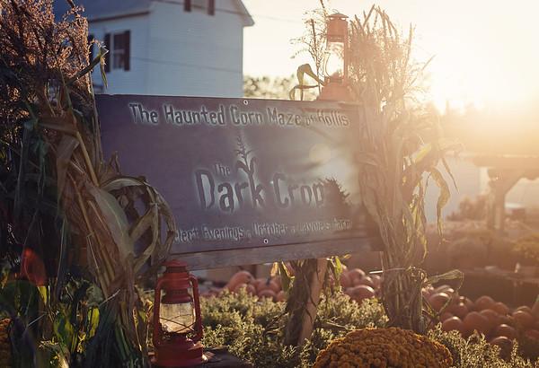 The Dark Crop 2011