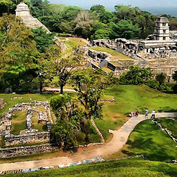 Palenque Mayan ruins, view from Templo de la Cruz #Chiapas #Mexico