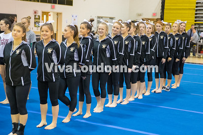 Gymnastics - Freedom at home meet 10.6.2016 (by Scudder)