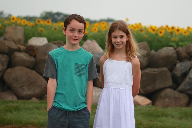 Family Sunflowers 2015