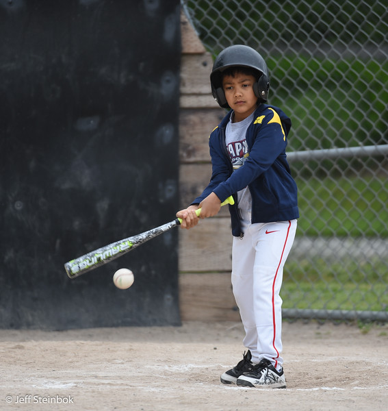 Baseball - 2019-06-01 - ELL A Scrappers (59 of 61).jpg