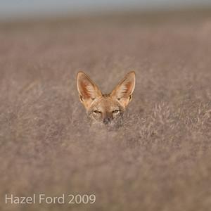 Namibia May 2009
