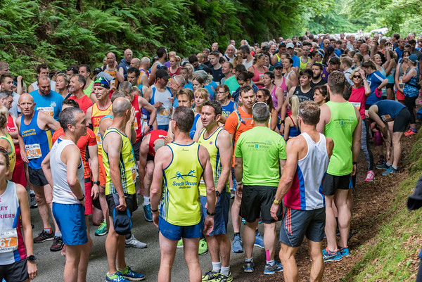 Triathlons, Road Racing, Cross-country Events