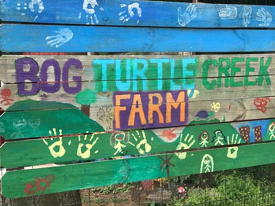 Bog Turtle Creek Farm