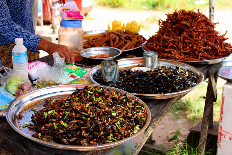 Bug stands are very popular in Cambodia
