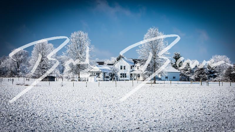 snow-113.jpg