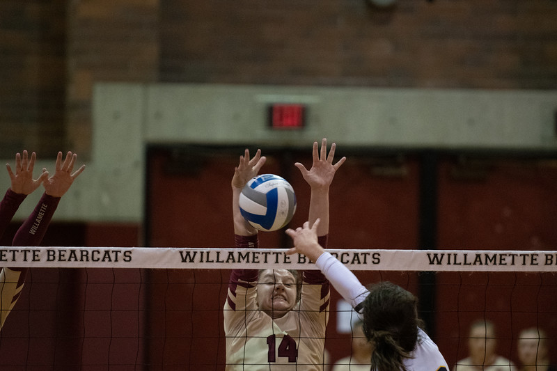 Willamette Bearcats vs Whitman Blues