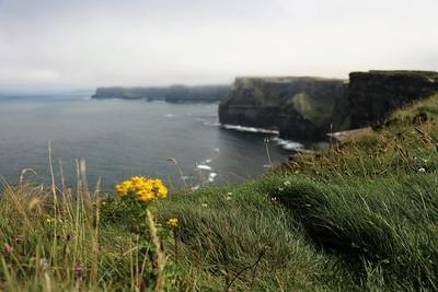 Last Day in Ireland