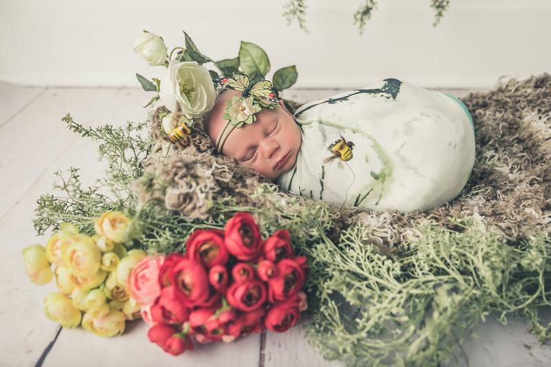 rockford_newborn_photography_O016.jpg