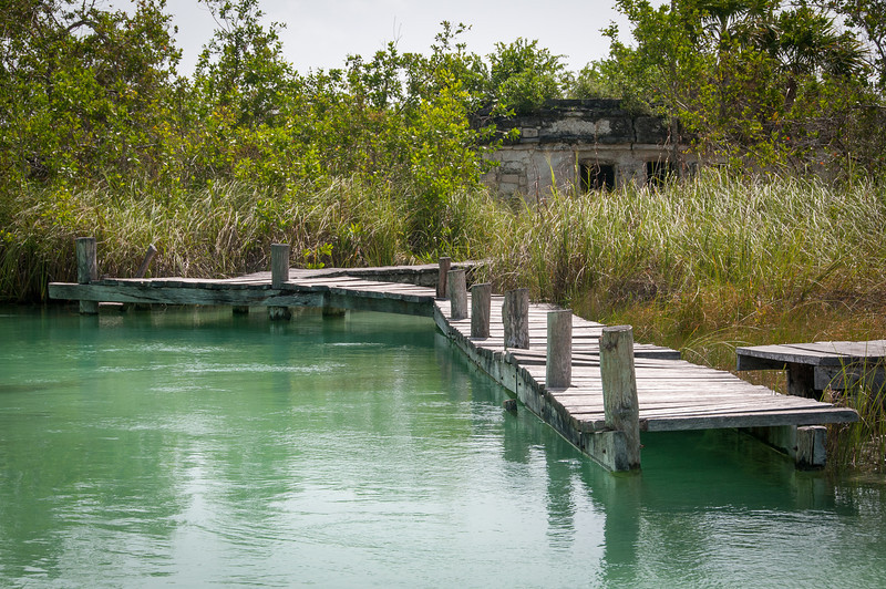 Bridge near mangrove in Mayan Riviera, Mexico