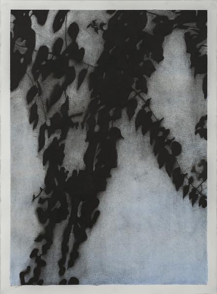 Shadow Leaves 4, SALE $1,500. U/F